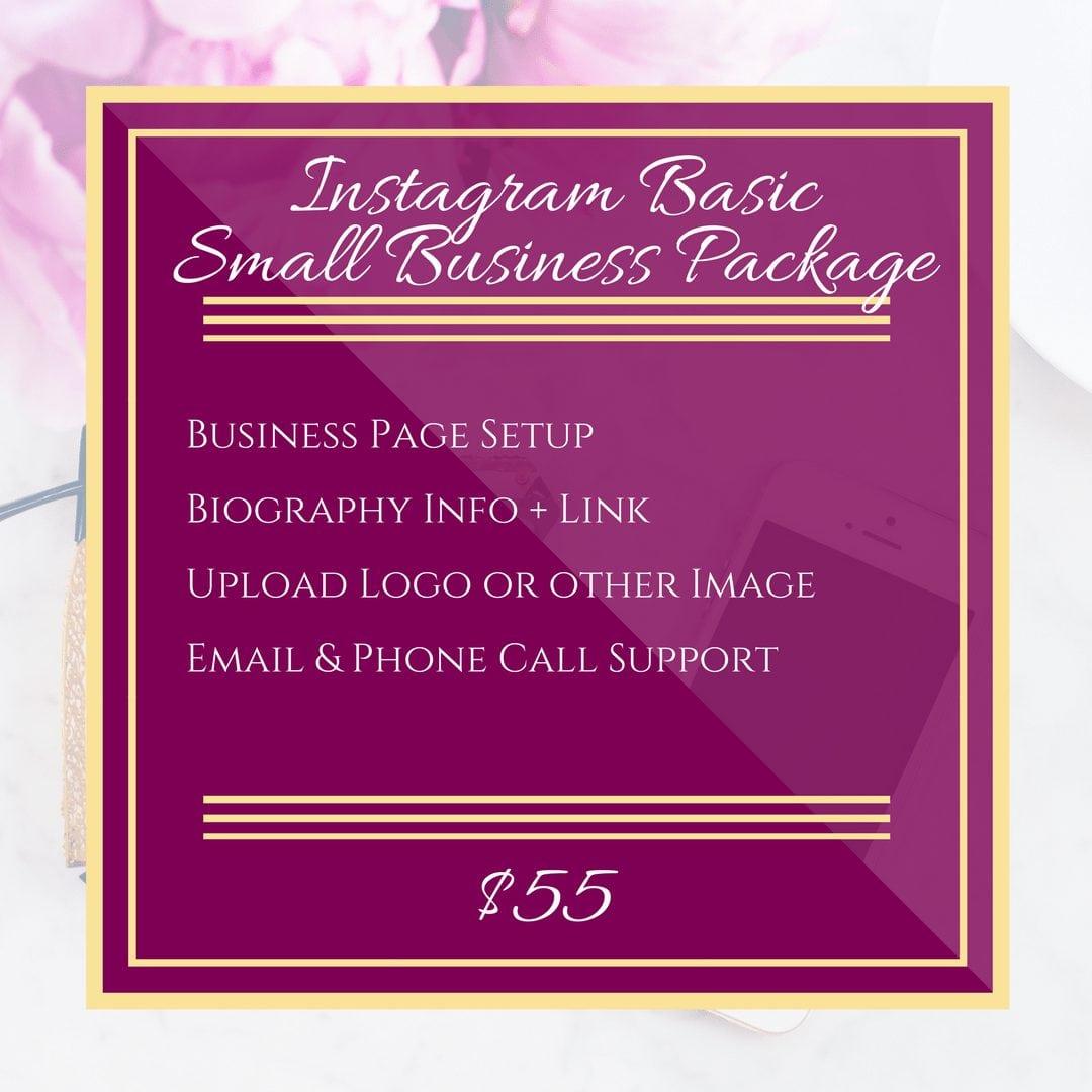 Instagram Business Setup